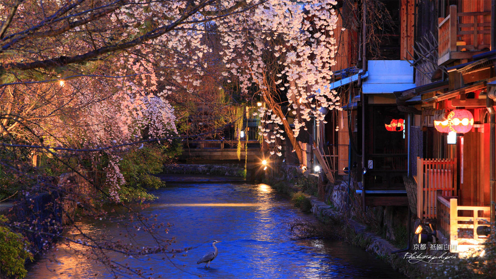 Kyoto travel guide area by area: Gion - youinJapan.net