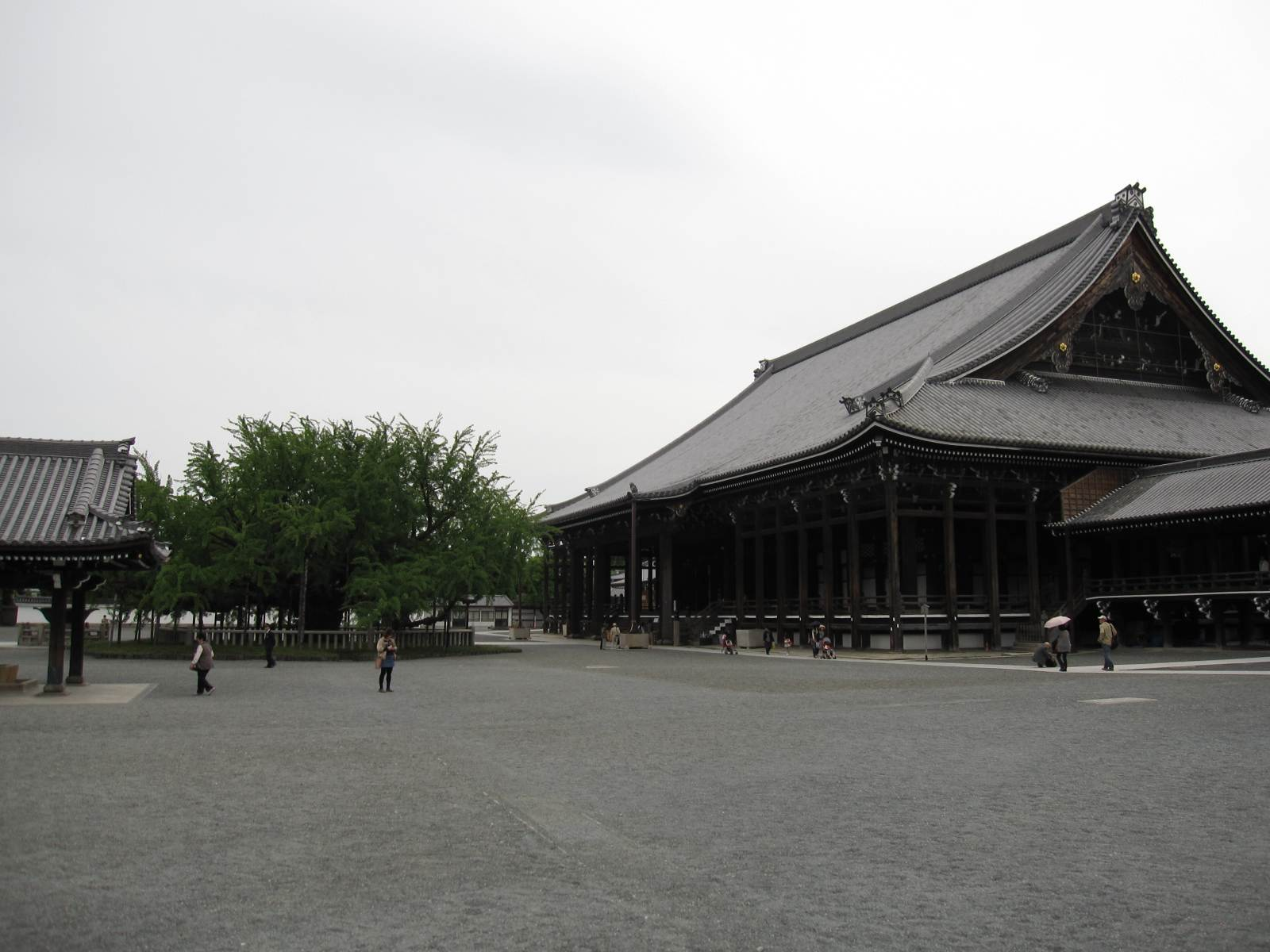Kyoto travel guide area by area: Kyoto station area - youinJapan.net
