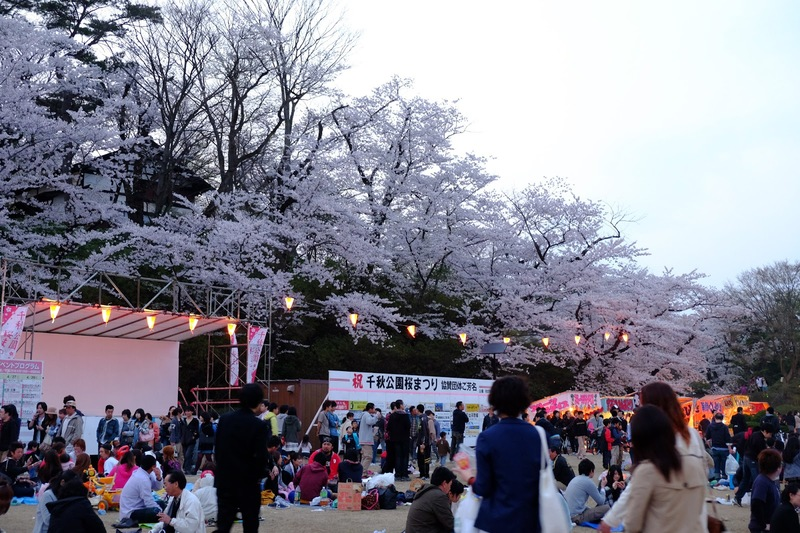 senshu park durante hanami ad akita
