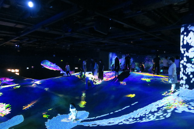 Digital Art Museum Teamlab Borderless, High Mountains and Deep Valleys