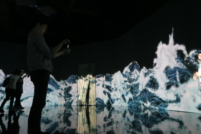 Digital Art Museum Teamlab Borderless, Black Waves