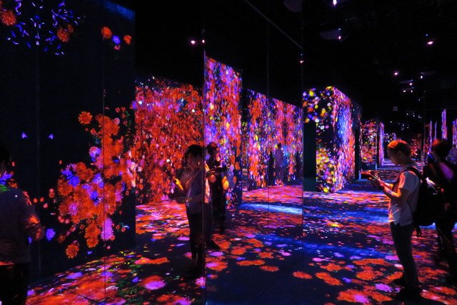 Digital Art Museum Teamlab Borderless, Flower Forest