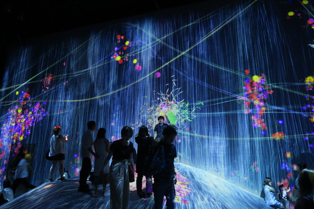 Digital Art Museum Teamlab Borderless, Universe of Water Particles On A Rock